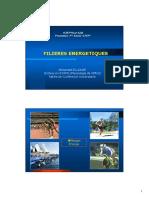 Filières énergétiques LFEP (1).pdf