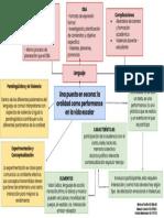 Mapa conceptual ppt