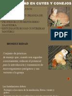 Rojas Contreras Mayerli C.BIOSEGURIDAD