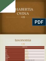 CHABERTIA OVINA