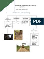 Evidencia Planeación de la producción del cultivo de aguacate.docx