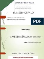EL MESENCÉFALO.pdf