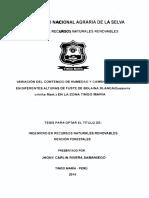 bolaina4.pdf