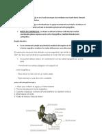 cartilla de temarios.doc
