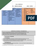 MALLA CIENCIAS SOCIALES CICLO 4.pdf