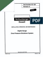 Dowell Digital Gauge