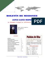 BOLETIN DE MISIONES 31-01-2011