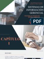 SISTEMA DE INFORMACION GERENCIAL-1
