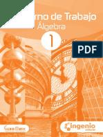 CT álgebra_1°