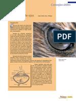 Enfermedades en Ojos.pdf