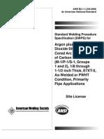 aws-b21-1-234-2006