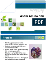 2. protein + asam amino.pdf
