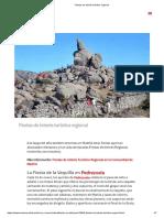 Fiestas de interés turístico regional.pdf