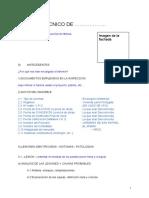Modelo basico informe de inspección