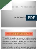 38_audit_manual