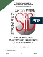 PV PLAN DE TRABAJO DE PRACTICA DE PLANTEAMINETO DX QX I virtual 2020 II