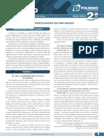 05_-_A_infantilização_da_vida_adulta_-_Gênero_dissertação_EM2.pdf