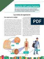 Ciencias naturales El cuerpo humano y su orgnizacion (1)