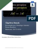 Mapa conceptual de algebra lineal de Domingo Duran.pdf
