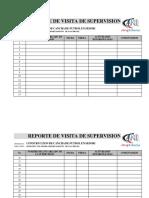 REPORTE DE VISITA DE SUPERVISION