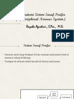 4. Anatomi Sistem Saraf Perifer