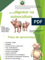 biodigestornasuinocultura-170830204155.pdf