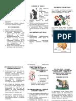 3.PREVENCIÓN DE CONSUMO, ALCOHOL, TABACO Y DROGAS