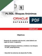 PLSQL 1 Bloques Anónimos