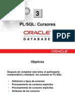 PLSQL 3 Cursores