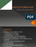 copiadecausasyconsecuenciasdelosincendiosforestales-090317044327-phpapp01.pdf