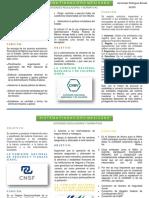 ENTIDADES REGULADORAS Y NORMATIVAS.pdf