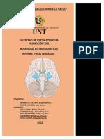 INVESTIGACIÓN FORMATIVA-MORFOLOGÍA (NEUROLOGÍA)
