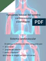 Funciones básicas del sistema cardiovascular