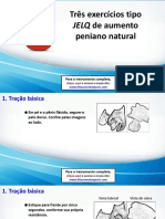 3 Exercícios Jelq poderosos de aumento peniano natural.pdf
