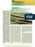 valorización del bagazo de caña de azucar (industria papelera)