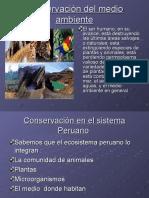 MEDIO AMBIENTE PERU.ppt