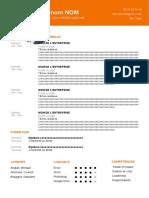 145-modele-cv-professionnel.docx.doc