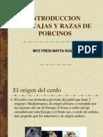 4 INTRODUCCION, VENTAJAS Y RAZAS.pdf
