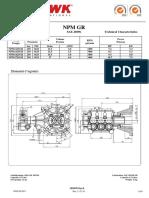 technical+sheets+npm+gr+pump.pdf