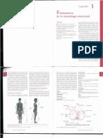 Libro Cinesiologia.pdf