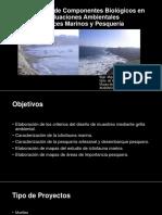 Clase semana IX Semestre 2015-I Hidrobiologia marina MVelasquez