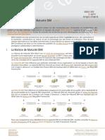 301in.FR La Matrice de Maturité BIM