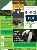 folleto campaña ambiental