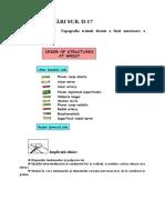 17. Santul pulsului. Tabachera anatomica. Topografia treimii distale a fetei anterioare a antebratului.doc