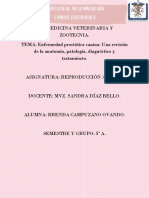 ENFERMEDAD PROSTATICA BRENDA CAMPUZANO.pdf