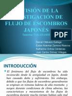 REVISIÓN DE LA INVESTIGACIÓN DE FLUJO DE ESCOMBROS