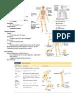 Skeletal Tissues Handouts