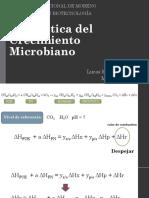 U3 Energética.pdf