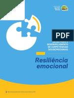 Instituto Ayrton Senna Macrocompetencia Resiliencia Emocional