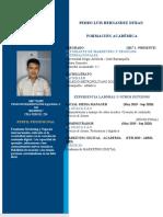 MODELO HV Institucional (PEDRO HERNANDEZ) (1).docx